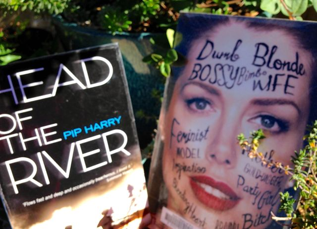 two books - head of the river and the fictional woman